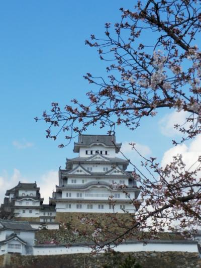2019 3月 町内会バスツアーで姫路城へ