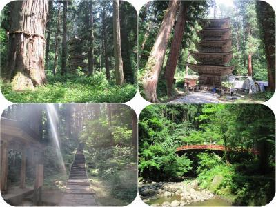 真夏の東北三県巡り(3)国宝羽黒山五重塔:神々しい光に包まれた継子坂の杉並木を歩いて