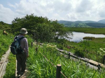 八嶋湿原から車山へトレッキング