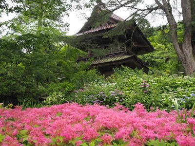 群馬県で参拝してみたかったお寺さんがあったので沼田へ行き、寺社巡りついでに観光もしてきた