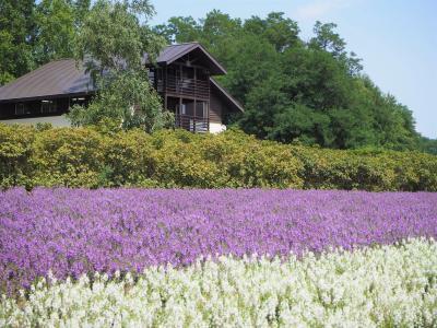 2019年 夏の北海道で寄り道旅 (その3)