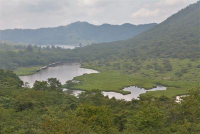 バイクでハイキング 赤城山 大沼から覚満渕、小沼を歩きました。