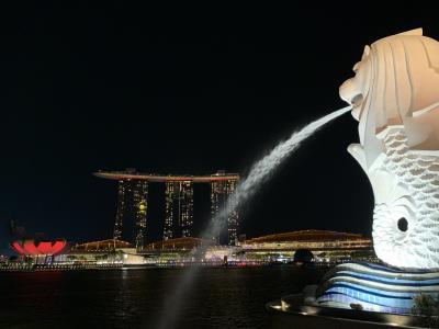 バリ旅 Vol8 DPS-SIN ☆7時間のトランジット・シンガポールをさまよう☆