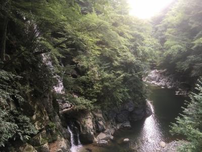 清水渓谷一の釜と忍野八海 バスツアー