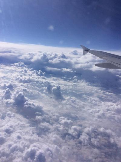 北欧からスイスへの夫婦15日間の旅 10日目 フランス