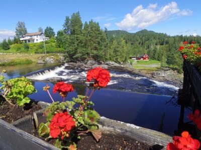 4・6歳児連れ、恒例夏のノルウェー帰省