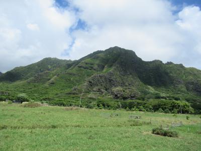 今年のハワイは寂しいハワイ…クアロアの映画ロケ地ツアーは 心地よい風が吹き渡り 楽しめるツアーでした!