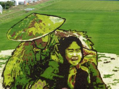 今年は、あの「おしん」、青森県田舎館村の日本一の田んぼアート