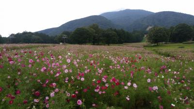 2017年 黒姫高原と野尻湖