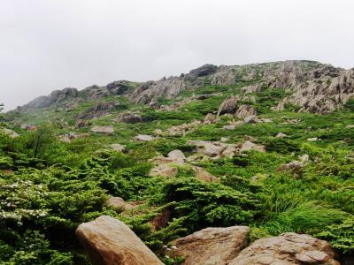 今年の夏山は東北の岩手山・早池峰山に挑戦・・・ 3ー早池峰山登頂目指して「#夏旅2019」