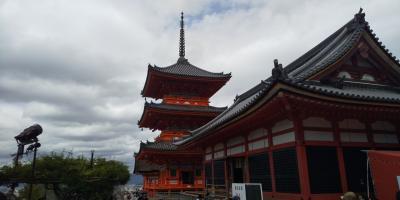 京都観光と湯豆腐会席