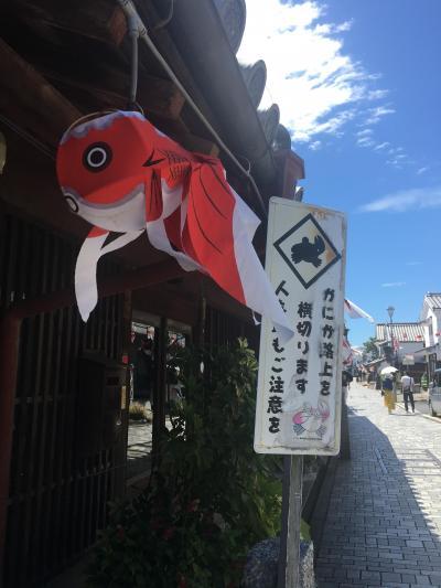2019年の夏休みは、金魚・金魚・・柳井金魚ちょうちん祭り♪①出発から祭り前まで