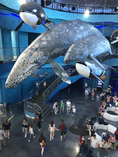 世界最大の国は水族館もデカかった