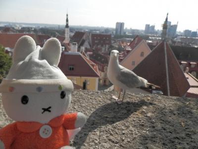 グーちゃん、エストニアへ行く!(タリン/展望台から、JODAN!編)