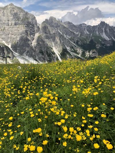オーストリアチロルシュトゥバイタールの旅【3】シュリック2000からNiederer Burgstall2019年7月