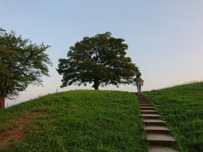 プチ北海道気分。夕焼けにそまるゆずの木を見に清水ケ丘公園へ。