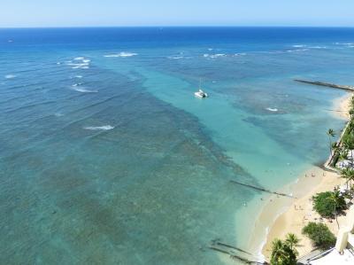 """ハワイの休日・""""アッ""""と言う間に過ぎ去った15日間 ワイキキ周辺で、のどかで&の~んびりした風景を楽しむ。(2019)"""