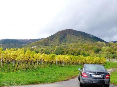 2013年秋のドイツ17:最終日、ドイツワイン街道の秋を楽しむ。