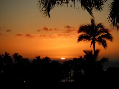 癒やしのハワイ島