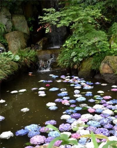 映えポイントいっぱい 茨城のあじさい寺 雨引観音