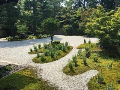 令和元年の京都散歩 夏 秋 冬