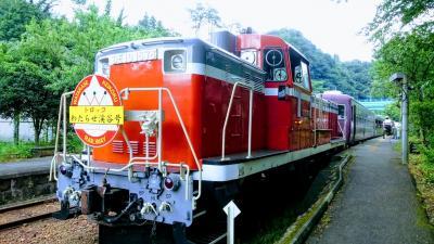 青春18きっぷでトロッコ列車に乗りに行こう☆