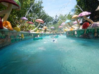 セブ島Jパークアイランドリゾート&ウォーターパーク宿泊とジンベイザメと泳ぐ体験