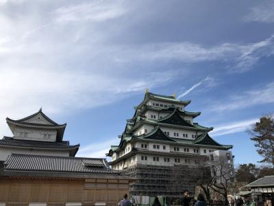 1泊2日で名古屋女子旅 ~名古屋城・東山動物園・レゴランド~