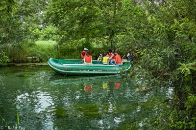新緑の 鎌池 落ち着いた雰囲気です!!