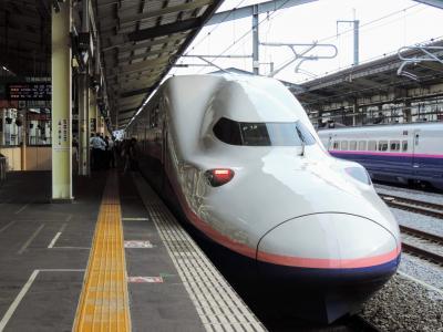 [引退間近] 世界最大の新幹線・E4系グリーン車 乗車記