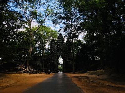 神秘のカンボジア  でも遺跡だけじゃない!