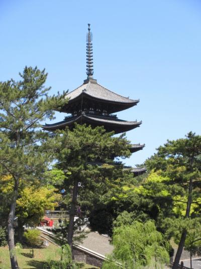 平成最後の月に訪れ、令和に記す紀州・大和路の旅 6日目その2 ~ 興福寺とその周辺 ~