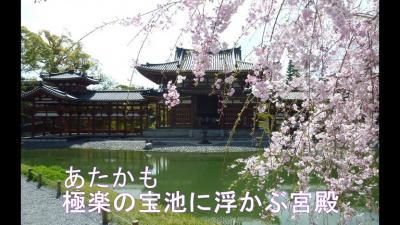 平成最後のツーリング 西日本2850Km Ⅺ 世界遺産 『平等院』 国宝 【鳳凰堂】