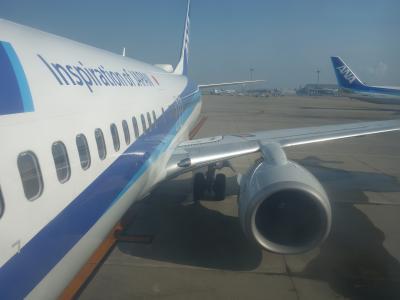 ボーイングB737-800に乗りました。NGO-HND NH86。7:55発。