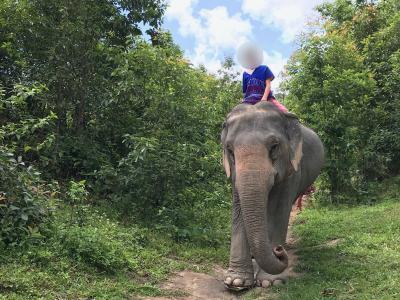 2019夏 孫と二人LCCでチェンマイ へ ②人と象が共に住む村へ、1日象のお世話ツアー