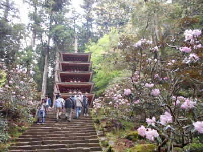 たまにはベタな観光旅行1904 「平成最後の日に室生寺&今井町&飛鳥を訪れました。」  ~奈良~