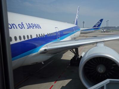ボーイング777-300に乗りました。HND-JFK NH110。10:20発。満席でした。夏休みですね。