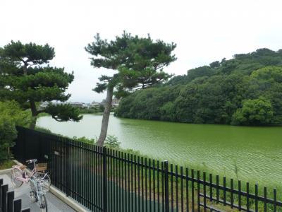 おばちゃん熊野三山と古墳で「自分なくし修行」5、百舌鳥古墳群で自分を取り戻す。