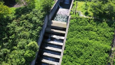 大ヶ洞ダム(おおがほらだむ)階段状の放流路,岐阜県【空撮】ドローン、ダムカード