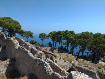 第4日目(8月9日)ナポリからカプリ島観光(青の洞窟、ヴィラ・ジョヴィス(皇帝ティベリウスの別邸))