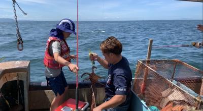 2019夏 子連れ日帰り 明石のタコ釣り船で高級たこをゲットする