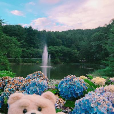 名もなき噴水が綺麗だったので空撮してみた、長野県,安曇野市