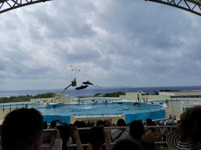 夏の沖縄②