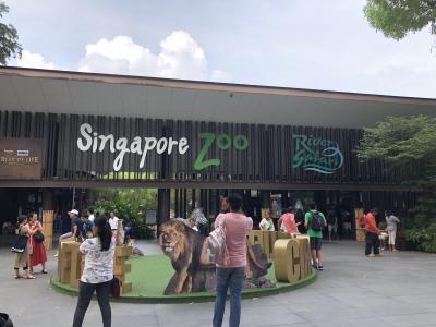 マー様に会いに!シンガポールの旅2019その2~シンガポール動物園~
