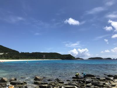 SFC修行の旅座間味でダイビング(4泊5日)