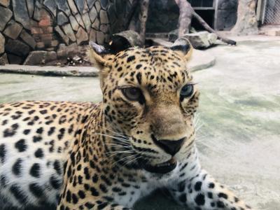ホーチミン動植物園へ
