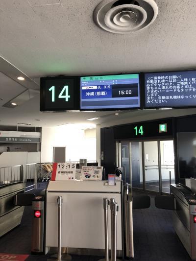 2019夏休み 沖縄家族旅行~1日目~