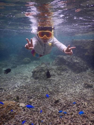 夏休みに宮古島へ4日間の旅③二日目サンゴがいっぱい吉野海岸とイムギャーマリンガーデン