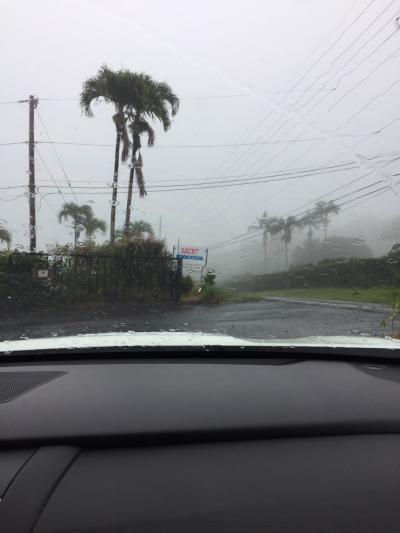 2019年サマーバケーションは9度目のハワイ島+初のマウイ島10日間(*^-^*)3日目Part2~どしゃ降りのコナコーヒーロードを行く!!