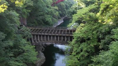 猿橋の峡谷、こじんまりとしているけどドローンには難所、空撮してみた